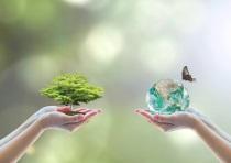BVI unterstützt prinzipienorientierte Regulierung der Nachhaltigkeitsrisiken im Fondsgeschäft
